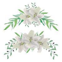 insieme dell'acquerello della disposizione dei fiori del giglio dell'annata