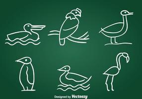 Insieme di vettore di uccelli disegnati a mano