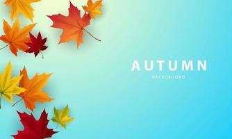 poster di autunno con bordo di foglie che cadono vettore