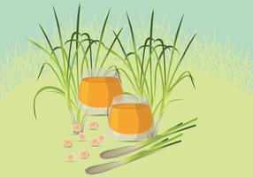 Illustrazione gratuita di citronella vettore
