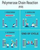fasi di reazione a catena della polimerasi infografica