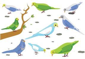 Vettore gratuito di uccelli pappagallini