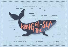 Illustrazione vettoriale di balena piatta