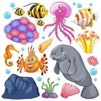 insieme di creature marine e coralli su sfondo bianco