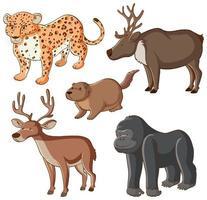immagine isolata di cinque animali selvatici vettore