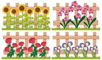 diversi tipi di fiori in giardino vettore