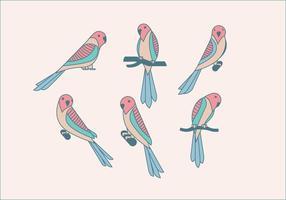 vettore carino pappagallino