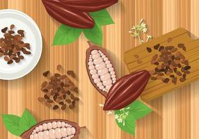 Illustrazione di fagioli di cacao gratis vettore
