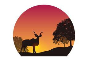 vettore di sagoma kudu