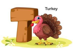 t per la Turchia