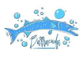 Pesce Barracuda gratis vettore