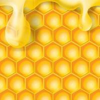 goccia di miele trasparente realistica sul favo vettore