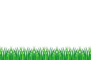 erba verde isolata vettore