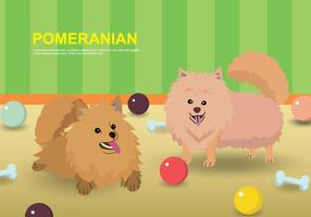 Illustrazione di Pomeranian gratis vettore