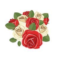 rose isolate su priorità bassa bianca vettore