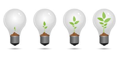 pianta che cresce all'interno della lampadina vettore