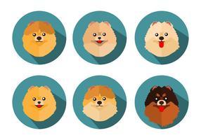 Vettore libero delle icone di Pomeranian