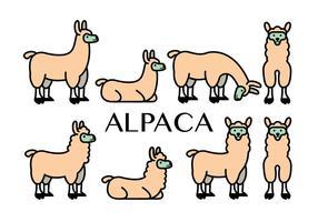 Icone vettoriali di alpaca