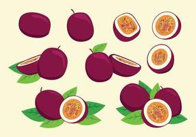 Vettore di frutto della passione gratis