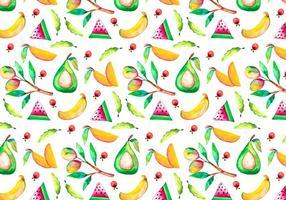 Illustrazione di mango dell'acquerello di vettore gratis