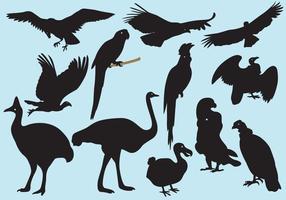 Sagome di grandi uccelli vettore