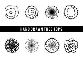 Vettore disegnato a mano libera delle cime degli alberi