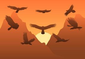 Vettore Condor gratuito