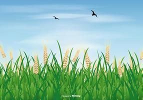 Illustrazione del giacimento del riso vettore