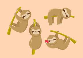 Vettore piatto bradipo