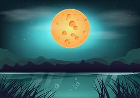 palude di notte di luna di bellezza