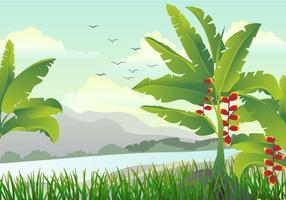 Scena con illustrazione di albero di banana vettore