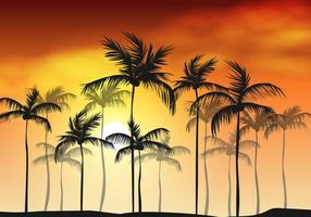 Sfondo di palma domenica rami di palma