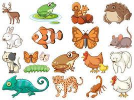 grande insieme di fauna selvatica con molti tipi di animali vettore