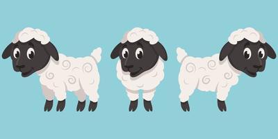 agnello in pose diverse vettore