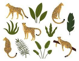 collezione di leopardi, foglie esotiche, piante tropicali vettore