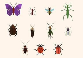 Vettore di insetti gratis