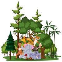 un gruppo di personaggi di animali selvatici all'aperto vettore