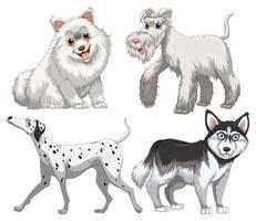 diversi tipi di cani vettore