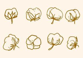 Vettore di fiore di cotone disegnato a mano libera