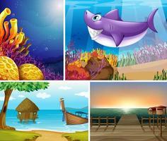 quattro diverse scene di spiaggia tropicale