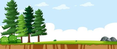paesaggio vuoto nella scena del parco naturale con alcuni pini