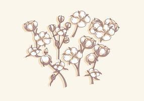 Vettore semplice del fiore del cotone