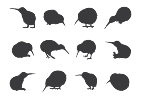 Sagome di uccelli Kiwi vettore