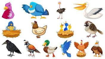 set di diversi uccelli in stile cartone animato isolato vettore
