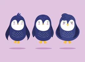 pinguini cartone animato uccello antartico animale fauna selvatica set