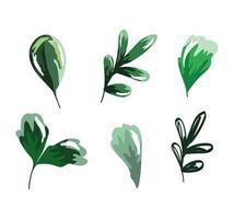 foglie acquerello set fogliame vettore