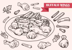 Ali di Buffalo disegnate a mano vettore