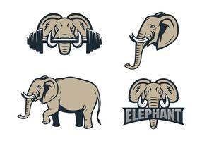 Vettore di elefante gratis