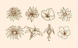 Vettore di fiori disegnati a mano