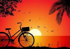 Vettore libero di tramonto della spiaggia di Bicicleta